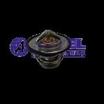 AJCB-04552